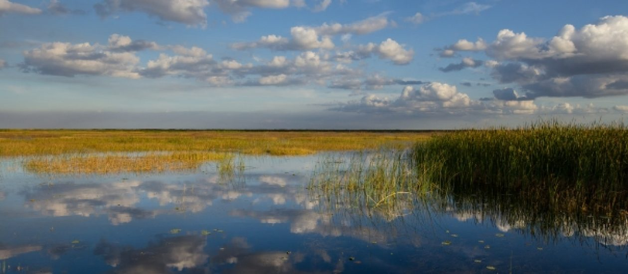 okeechobee-1-carlton-ward-photography